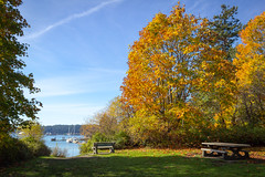 fall (kevin.boyd) Tags: fall view royal victoria bc british columbia canada trees autumn park bench ocean sailboat grass boat esquimalt harbour