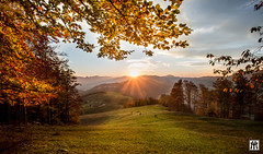autumn sunset (yves_matiegka) Tags: switzerland juramountains sunset fall foliage forest trees hills rollinghills mountains jura rays