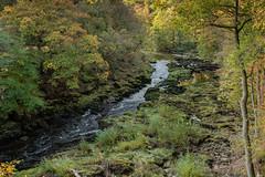 The Wharf Valley (Gareth Keevil) Tags: autumn boltonabbey colour garethkeevil landscape nikon nikond810 october river sunshine uk water wharf yorkshire zeiss28mmdistagon