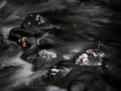 Long exposure on fast flowing stream (kenemm99) Tags: autumn rydal landscape lakedistrict 5dmk3 cumbria longexposure canon colourpop places kenmcgrath