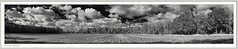 2018-09-25_08-21-03 (fredericfromage) Tags: sw bw monochrom panorama himmel wilken wetter felder bäume natur münsterland