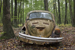 ...sidekick. (lars feldhaus) Tags: abandoned decay derelict rust aircooled volkswagen vw beetle käfer nature autumn classic oldtimer vintage cars