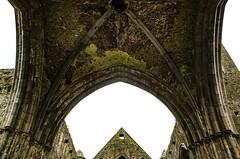 Cashel Castle o la Rocca di San Patrizio (Ireland) (giannizigante) Tags: dublino irlanda cashel castle celtic
