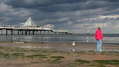Strand (ucreutz) Tags: pyramide magenta strand tang wasser wolken