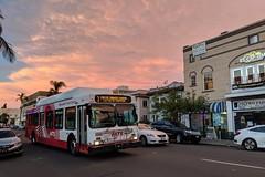 MTS Bus (So Cal Metro) Tags: bus7205 7200 rt3 bus metro transit newflyer c40lf mts sandiego sandiegotransit hillcrest sunset
