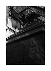 (billbostonmass) Tags: adox silvermax 100 film 129silvermax1100min68f epson v800 fm2n 40mm ultron boston massachusetts