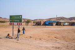 Scène de vie ( Philippe L PhotoGraphy ) Tags: afrique namibie kuneneregion na afric namibia désert etosha fauve dunesoiseaux rapace philippelphotography