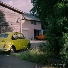 Hasselblad 1000F   Kodak Ektar 80mm f2.8   PRO160NS 120 (Camera of Bob) Tags: hasselblad1000fkodakektar80mmf28 hasselblad 1000f kodak ektar 80mm f28 pro160ns 120