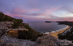 0S1A1829 (Steve Daggar) Tags: pearlbeach nswcentralcoast gosford woywoy landscape sunset seascape brisbanewaternationalpark