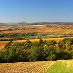 Pálava hills, only a stone's throw away thumbnail