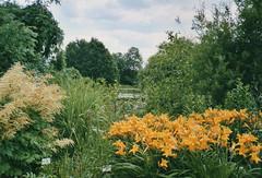 2003 Germany // Botanischer Garten Marburg (maerzbecher-Deutschland zu Fuss) Tags: 2003 germany deutschland botanischergarten marburg hessen maerzbecher