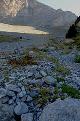 Montée au col de Chétive (RarOiseau) Tags: paca hautesalpes montagne champsaur pierre