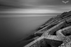 Sea defences (Andy Davis Photography) Tags: tide newbrighton shells sand clouds beach mersey irishsea autumn monochrome canon abstract coast longexposure