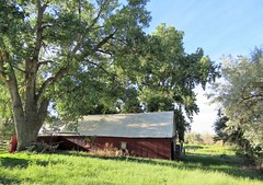 The Old Red Barn (Patricia Henschen) Tags: chicobasinranch coloradosprings colorado easternplains ranch rural backroads roadside red barn old