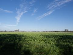 (Jeroen Hillenga) Tags: landscape landschap platteland countryside akker acre blauwelucht bluesky drenthe netherlands nederland farmland ruimte weids