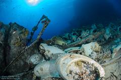 DSC_4767 (bajo_el_mar) Tags: 2018 marrojo underwater fotosub