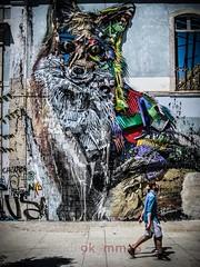 Urban Fox (blende9komma6) Tags: lisboa lissabon portugal canon ixus 980 street art fox fuchs urban city graffiti kunst downtown streetart animal tier