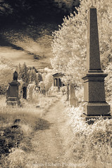 Down the Path II (James Etchells) Tags: arnos vale garden cemetery bristol city urban ir infrared sepia old antique photographic toning effect 18th century eighteenth nikon photography tomb tombs landscape landscapes sky clouds portrait colour color architecture ancient experiment exploring past heritage natural world nature light south west england uk britain monument abandoned overgrown statue