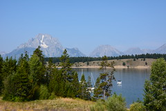 Teaton 0576 (mart.panzer) Tags: teaton yellowstone us usa nationalpark nature scenic top highlights attractions must see awesome best bestof landscape elk bison teton grandteton bear