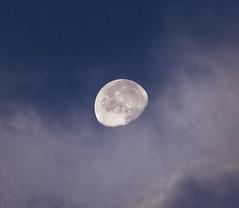 Morning Moon September 29, 2019 (MJRodock) Tags: olympus em5markii mzuiko 40150mm f28 lunar moon clouds