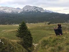 IMG_0712 (Andrea Omizzolo) Tags: montaallacerva 2018 dolomiti dolomites dolomiten alps alpi dolomitibellunesinationalpark parconazionaledolomitibellunesi pianieterni bivaccobrendol erera caseraerera brendol bramitodelcervo trekking amici