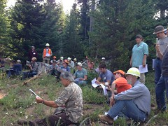 2015. Advanced Insect and Disease Field Session: Identification, Life Cycles, Control Measures and Silvicultural Regimes. Mt. Hood National Forest, Oregon. (USDA Forest Service) Tags: usda usfs forestservice stateandprivateforestry foresthealthprotection region6 r6 foresthealth forestentomology forestpathology insects diseases forestinsect forestdisease training education 2015 treemortality advancedinsectanddiseasefieldsession westernforestryandconservationassociation oregon kristenchadwick