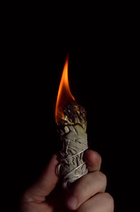 Sage (kaldec_) Tags: houston cypress photober fire flame sage witch witchy pagan ritual cleaning spirituality spirit spirits herbtober photober2018 sigma 1835mm f18 dc hsm