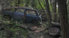 Mini graveyard. (Robin Decay) Tags: minigraveyard mini graveyard car cars tire tires tree trees big rust forest blue outdoor