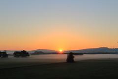 unterwegs in der Bliesaue_1 (saarbergmann) Tags: sonnenaufgang natur canon biosphärenreservat bliesaue blies