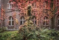 DSC_6660-HDR (Foto-Runner) Tags: urbex lost decay abandonné carmel couvent automne