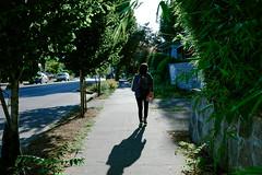 Portland (Nikorasusan) Tags: portland oregon pnw america roadtrip roadtripusa westcoast uswestcoast fujifilm xpro2 fujixpro2 travel city streetsphotography streets urban hipsters rosecity travelamerica explore neverstopexploring