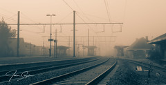 J_Strijckers--3 (johan strijckers) Tags: tongeren foggy fog rails trainstation deserted