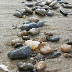 57598958 (aniaerm) Tags: sea coastalfinds sand