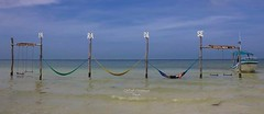 Holbóx, todo un paraíso! (Susana M.L.) Tags: playa paraiso holbóx airelibre vacaciones méjico