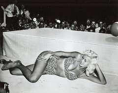 Jayne Mansfield (poedie1984) Tags: jayne mansfield vera palmer blonde old hollywood bombshell vintage babe pin up actress beautiful model beauty hot girl woman classic sex symbol movie movies star glamour girls icon sexy cute body bomb 50s 60s famous film kino celebrities pink rose filmstar filmster diva superstar amazing wonderful photo picture american love goddess mannequin black white mooi tribute blond sweater cine cinema screen gorgeous legendary iconic tiger panter leopard bikini boobs