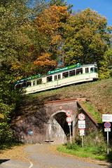 Schilderwald und GT6 (trainspotter64) Tags: strasenbahn tram tramway tranvia tramvaj tramwaje tramvaje streetcar schmalspurbahn überlandbahn museumsbahn museum kohlfurth bmb bogestra düwag gt6 herbst rheinland nrw