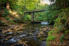 Glen Helen (cabmanstu) Tags: isleofman glen helen river neb autumn trees leaves