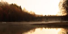 Morning fog (malin.edlund) Tags: fog water mirror sunrise själevad autumn fall trees