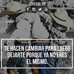 Quién las entiende  . . . #corridosvip #teamcorridosvip #corridos #borrachos #tkt #fiesta #peda #ranchero #carrerasdecaballos #cuaco #mexico #regional #sinaloa #sonora #amigos #corridosybanda #corridosgram #corridoschingones #norteño #mexican #mexicanmusi thumbnail