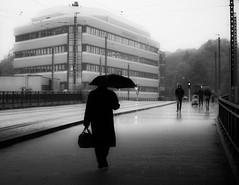 Rainy day (MortenTellefsen) Tags: 2018 gatefoto rain umbrella monochrome city bw blackandwhite blackandwhiteonly bergen norway norwegian street streetphoto streetview