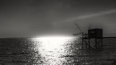 La cabane du pêcheur (Fred&rique) Tags: lumixfz1000 photoshop raw noir blanc carrelet charentesmaritimes chatelaillon océan atlantique soleil reflet pêche cabane pilotis filet contrejour