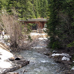 May 26, 2012 snow still at Lake Louise Area (1750m), Banff National Park thumbnail
