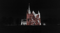 Tumbling Poppies (Crisp-13) Tags: tumbling poppies west front salisbury cathedral after dark night red spire