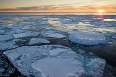Arctic Ocean (Cassie D.) Tags: ocean arctic arcticocean canon canon6d 6d seaice ice water north northern sunset horizon research