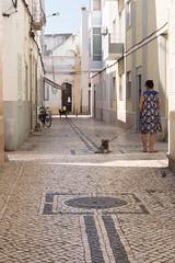 À l'heure de la sieste (marineavoile) Tags: portugal olhao rue street chiens dogs pavés cobblestones midday sieste naptime