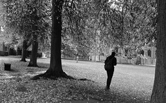 At the Park (Bury Gardener) Tags: ely candid cambridgeshire candids streetphotography street streetcandids snaps strangers people peoplewatching folks 2018 bw blackandwhite monochrome mono england uk britain