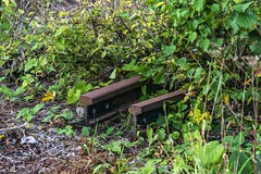 Peek-a-boo (d0mokun) Tags: blackcountry railway southstaffsline abandoned autumn rail rusty sunset urbandecay urbanexploration urbanlandscape urbex westmidlands tipton england unitedkingdom gb
