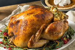 Whole Roasted Turkey Dinner For Thanksgiving (brent.hofacker) Tags: american autumn baked beans breast celebrate celebration cooked cranberry decoration delicious dinner fall feast food garnished gourmet grapes gravy harvest holiday homemade meal meat november organic parsley pie potatoes poultry pumpkin roast roasted rosemary sage season seasonal stuffing thanksgiving thanksgivingdinner thanksgivingmeal thanksgivingturkey traditional turkey vegetable