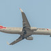 American B738 (MEX)
