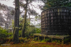 Moonshine (HSS) (buffdawgus) Tags: canon1585mmusmis california woodentanks marincounty lightroom6 canon7d topazstudio inverness landscape